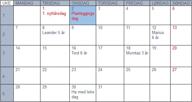 Plan for januar 2019
